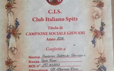 Club Italiano Spitz – Campione Sociale Giovani 2016