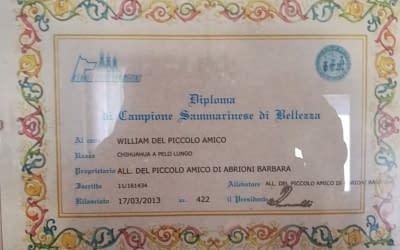 Diploma di Campione Sammarinese di bellezza – Chihuahua