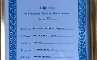 Diploma Giovane Campione Sammarinese – Chihuahua